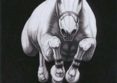 #17 (2012)<br>graphite on canvas, 72x60 inches