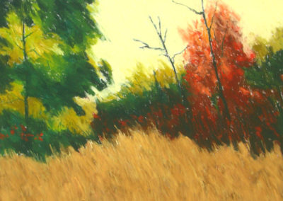 Autumn Colors (2010)<br>pastel on paper, 22 x 30 inches