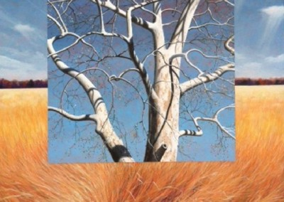 Beech Tree (2011)<br>acrylic on canvas, 40x40 inches