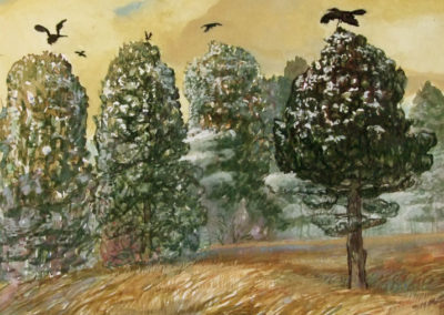 Crows and Cedars (2009)<br>watercolor on paper, 10 x 13 inches