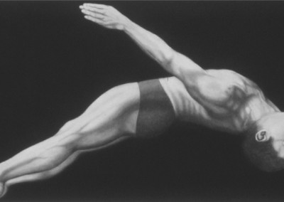 D-44 (2010)<br>charcoal on paper, 42x78 inches