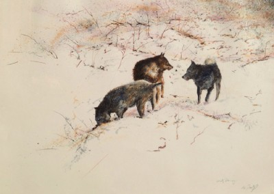 Dog Trot - Snow Field (Working Drawing)<br>oil and dry pigment on paper, 22x30 inches