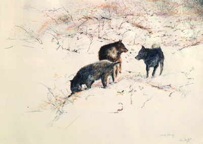 Dog Trot - Snow Field (working drawing)<br>oil on paper, 22 x 30 inches