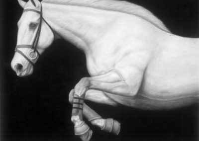 E-213 (2008)<br>charcoal on paper, 47 x 61 inches