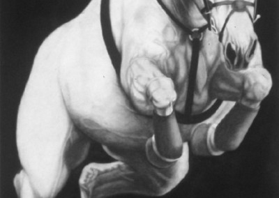 E-222 (2009)<br>charcoal on paper, 72x47 inches