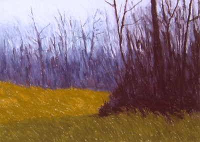 Early Spring (2010)<br>pastel on paper, 22x30 inches