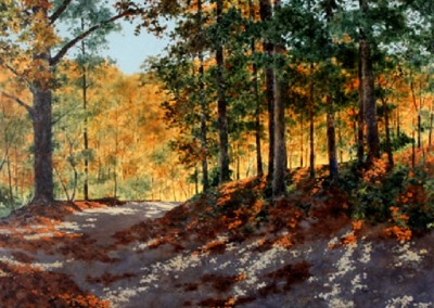 Eureka Springs Walking Trail (2011)<br>acrylic on canvas, 48x48 inches