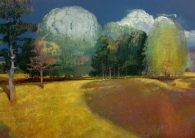 Field (2010)<br>oil on canvas, 48x60 inches