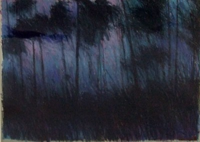 Nocturnal Trees (2000)<br>pastel on paper, 22x30 inches