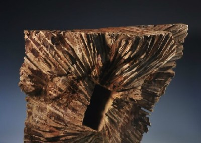 1207 Release from Function<br>redwood burl, 20.5x23x12 inches