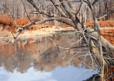 Sugar Creek (2011)<br>acrylic on canvas, 30x30 inches