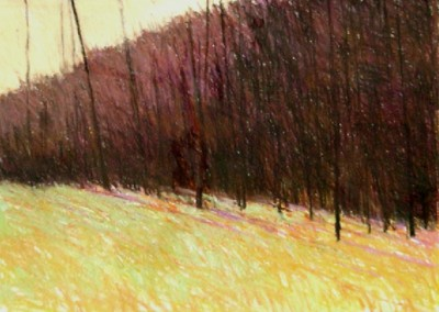 Through Woods in Evening (2001)<br>oil on pastel, 22x30 inches