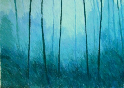 Trees in Morning Light (2005)<br>pastel on paper, 22x30 inches