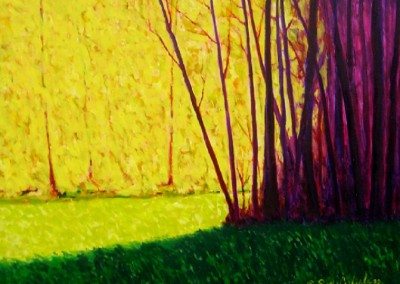 Trees in the Sunlight and Shadow (2009)<br>oil on canvas, 36x48 inches