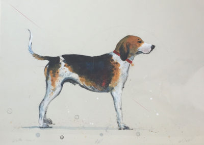 Walker Hound<br>mixed media on paper, 22.5 x 30 inches